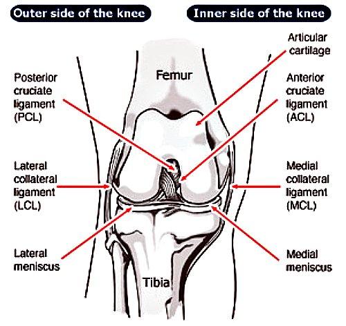 mcl knee injury, mcl injury, mcl injury symptoms, knee injuries, soccer mcl injury