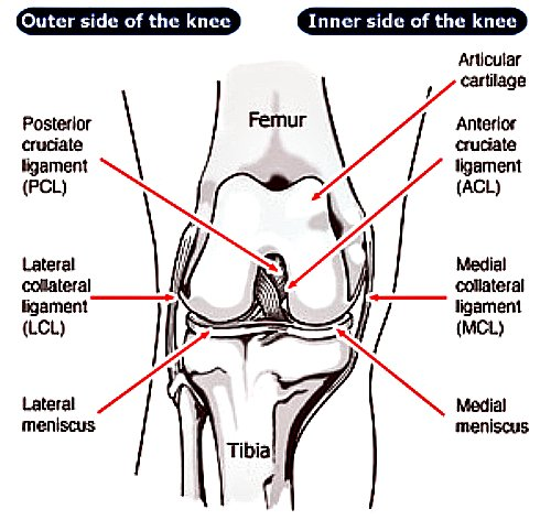 mcl knee injury, mcl injury, mcl injury symptoms, knee injuries, soccer mcl injury